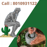 Specialist Doctor for Piles treatment in Pitampura
